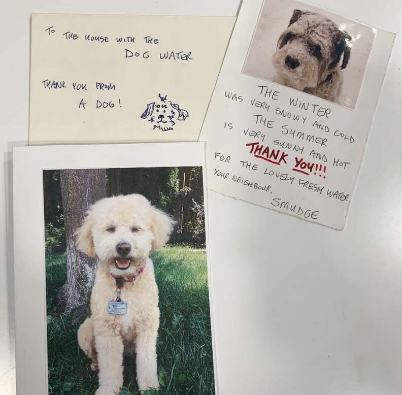 Thank you notes sent to StarPups Coffee