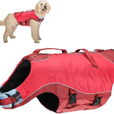 Kurgo Surf n' Turf Dog Life Jacket