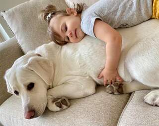 dog and baby cuddling
