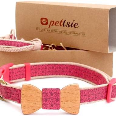 Dog friendship collar