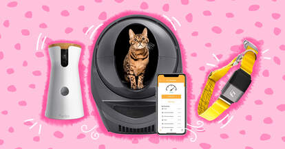 Pet tech products