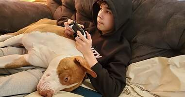 Hero dog alerts family to boy's allergic reaction