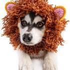 Lion Zoo Snood