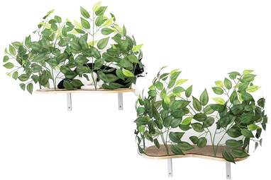 On2 Pets Cat Canopy Shelves with Leaves