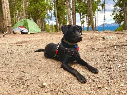 Belle of Colorado Campground