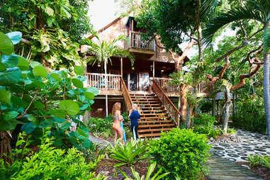 Seabird Island jungle cabin