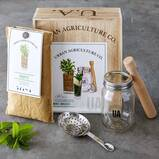 Grow Your Own Craft Cocktail Kit - Mint Mojito