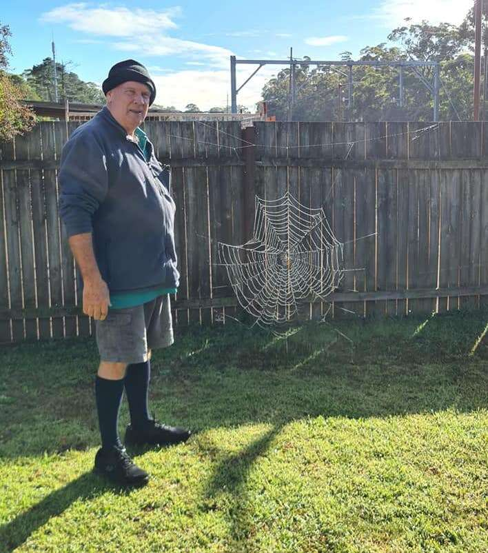 Guy and giant spider web