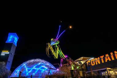 glowing mantis