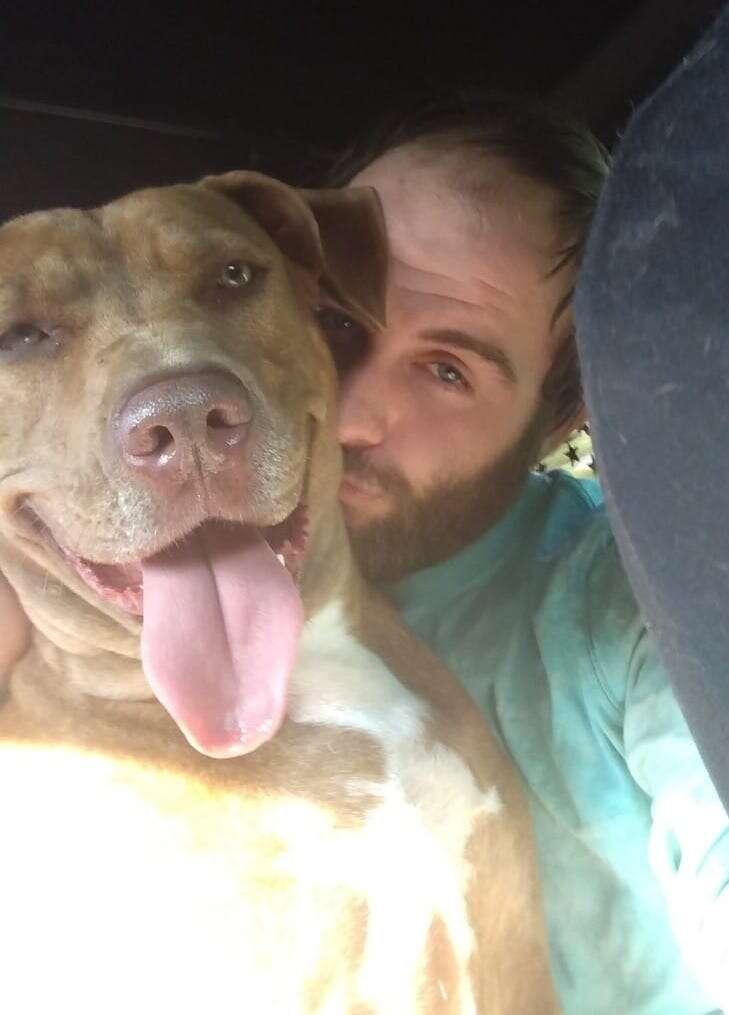 Man has an emotional reunion with service dog