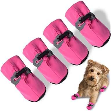 TEOZZO Small Dog Winter Boots