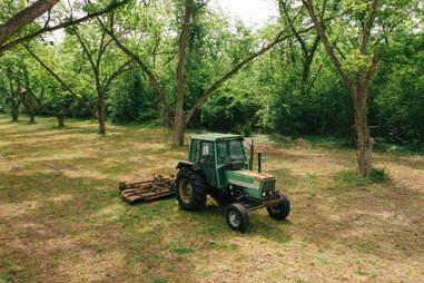 pecan tractor for growing pecans