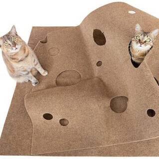 See All Cat Reviews