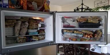 Nom Nom food in the freezer