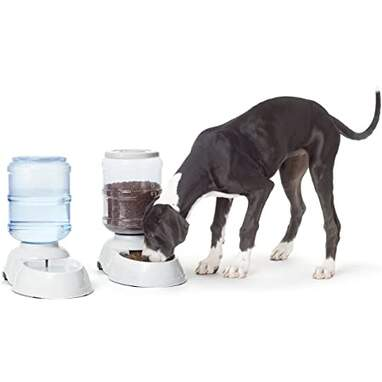 Gravity Pet Food Waterer and Feeder