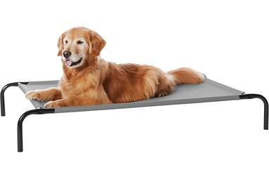 Cooling Elevated Pet Bed