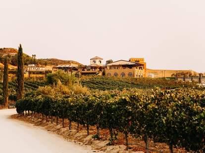 Fazeli Cellars Winery