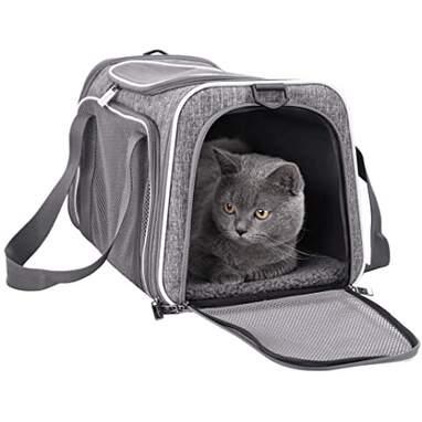 Petisfam Pet Carrier for Medium Cats