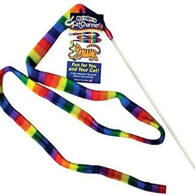 Rainbow Cat Charmer
