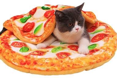 Cat pizza bed