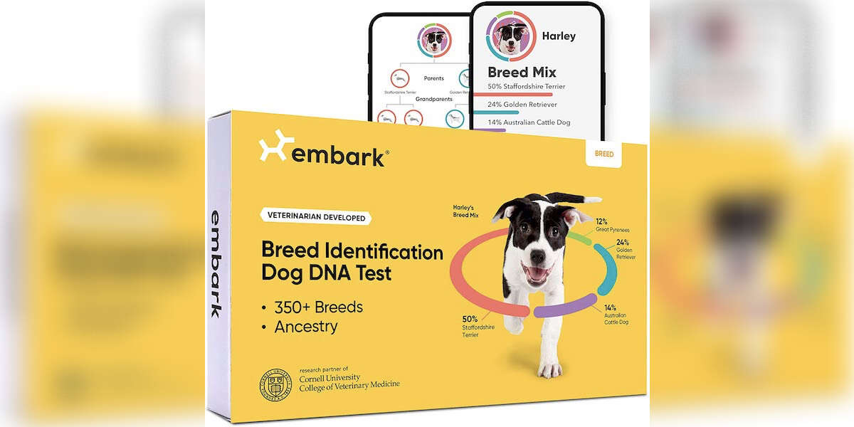 The Embark Dog DNA Test Is On Sale For Amazon Prime Day