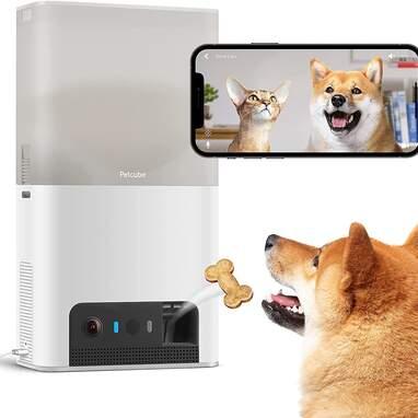 Petcube Bites 2 Lite Interactive WiFi Pet Monitoring Camera