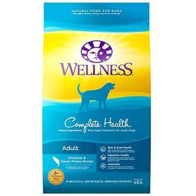 Wellness Natural Pet Food Complete Health Natural Dry Dog Food (30-Pound Bag)
