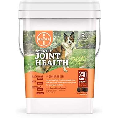 Synovi G4 Dog Joint Supplement Chews for Dogs (240-Count)