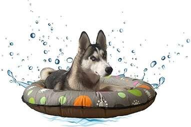 MMSPS Dog Float