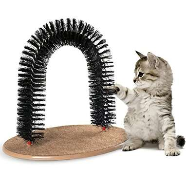 AikoPets Cat Arch