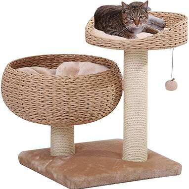 PetPals Woven Perch and Bowl