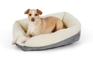 Amazon Basics Warming Pet Bed