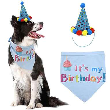 PUPTECK Dog Birthday Bandana with Hat