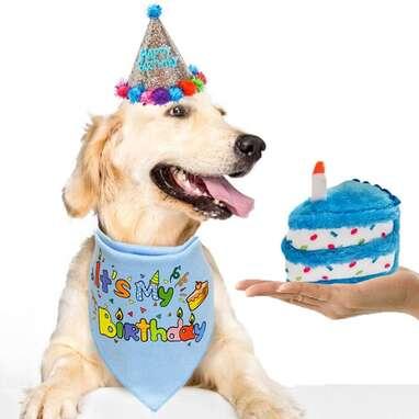 HOMIMP Dog Birthday Bandana Set with Cake
