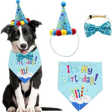 ADOGGYGO Dog Birthday Bowtie Kit
