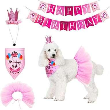 ADOGGYGO Dog Birthday Tutu Kit
