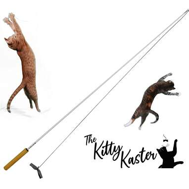 Kitty Kaster Toy