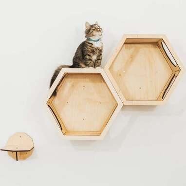 Enjoy The Wood Cat Shelves