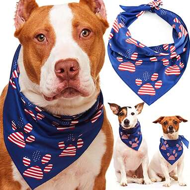 Odi Style American Flag Dog Bandana