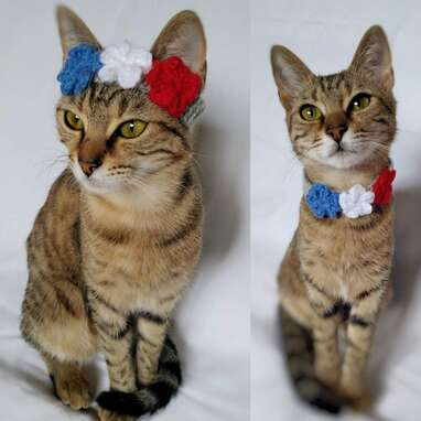 Adjustable Cat Flower Crown 4th of July