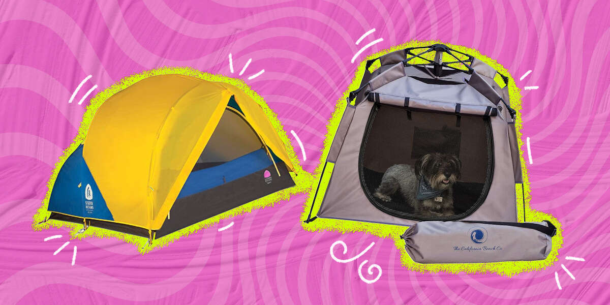 These Are The Best Tents For Camping With Dogs