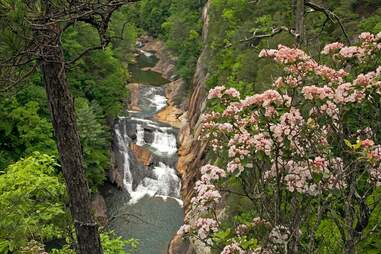 Tallulah Gorge State Park Page