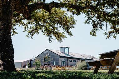Treaty Oak Distillery Long