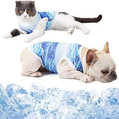 Coppthinktu Breathable Cooling Vest
