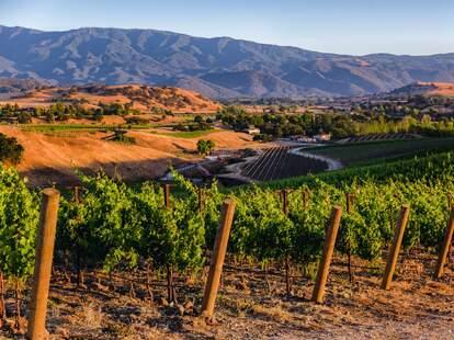 Crown Point Vineyards