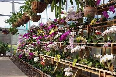 South Texas Botanical Gardens & Nature Center