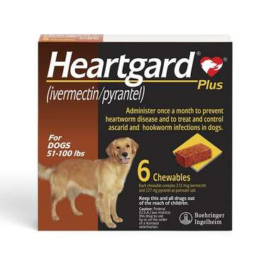 HEARTGARD Plus Soft Chew for Dogs