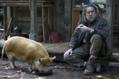 pig nic cage