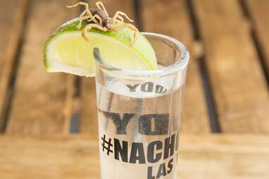 Nacho Daddy drink