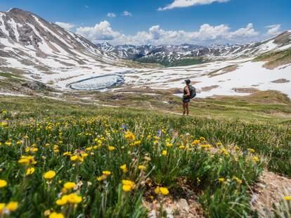 Woman hiking through wild flowers in a mountain range